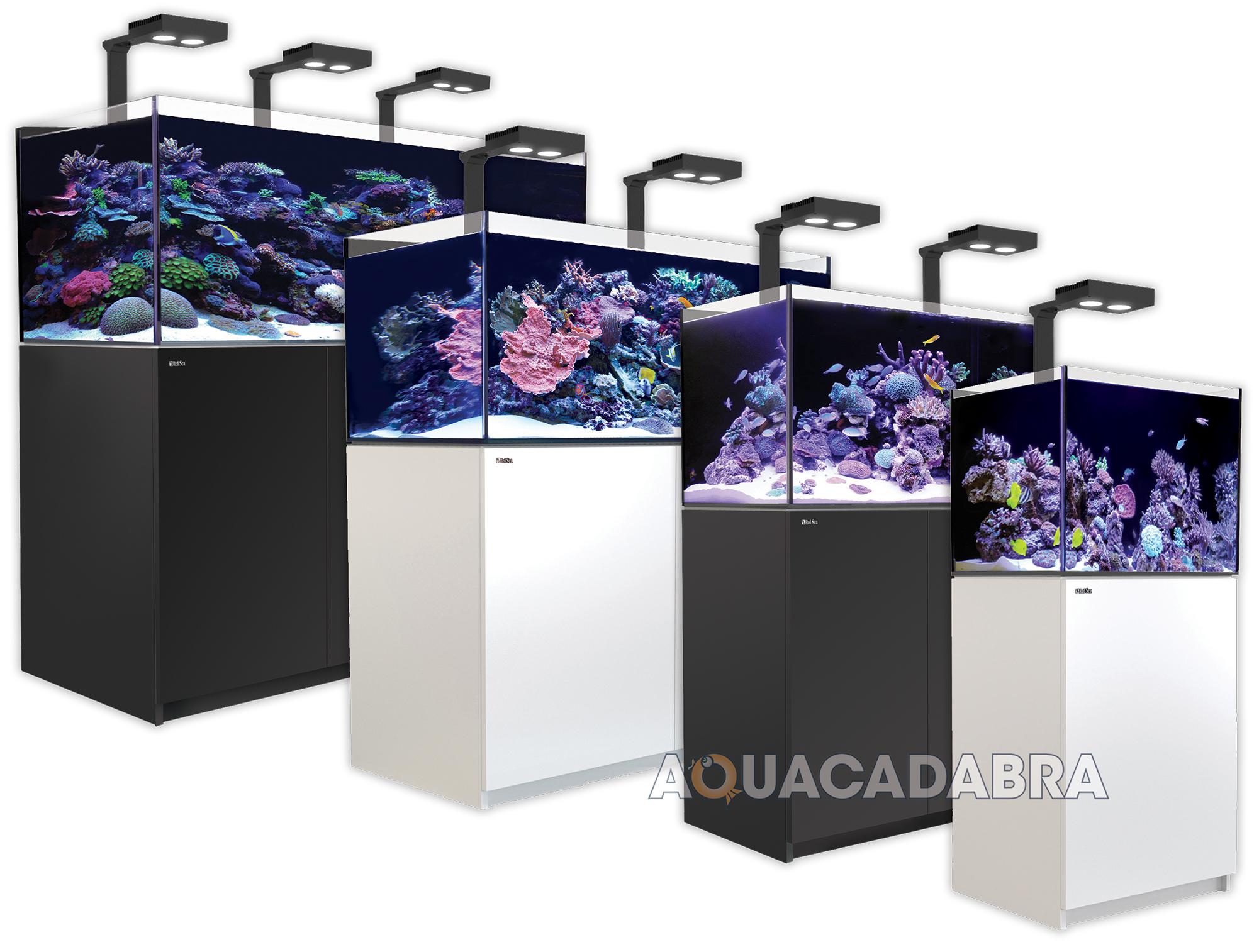 Image Result For Complete Marine Aquarium Package Uk