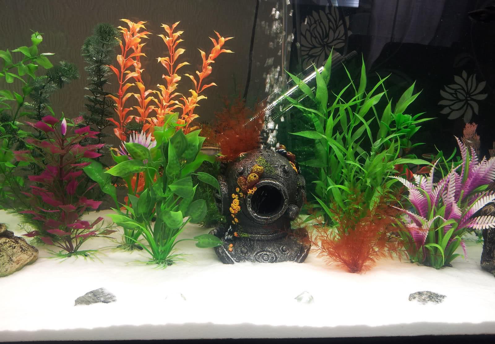 20kg white aquarium silica sand tropical fish tank discus for White algae in fish tank