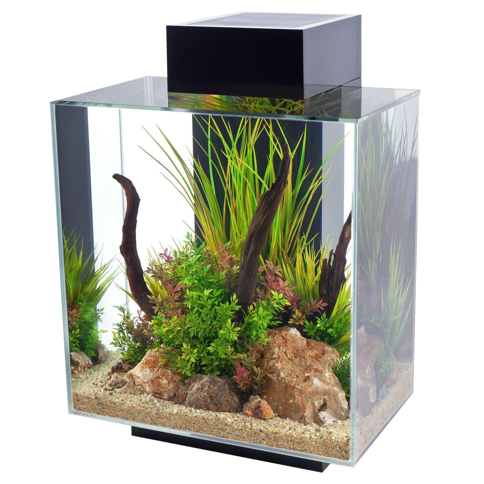 Aquarium fish tank ebay - Fluval Edge Led Aquarium Fish Tank 23l 46l 23 46 Litre Gloss White Pewter Black