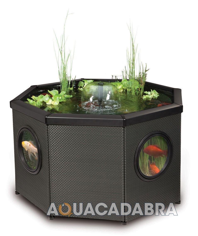 Blagdon affinity mocha fish pond koi coldwater patio for Fish tank koi pond