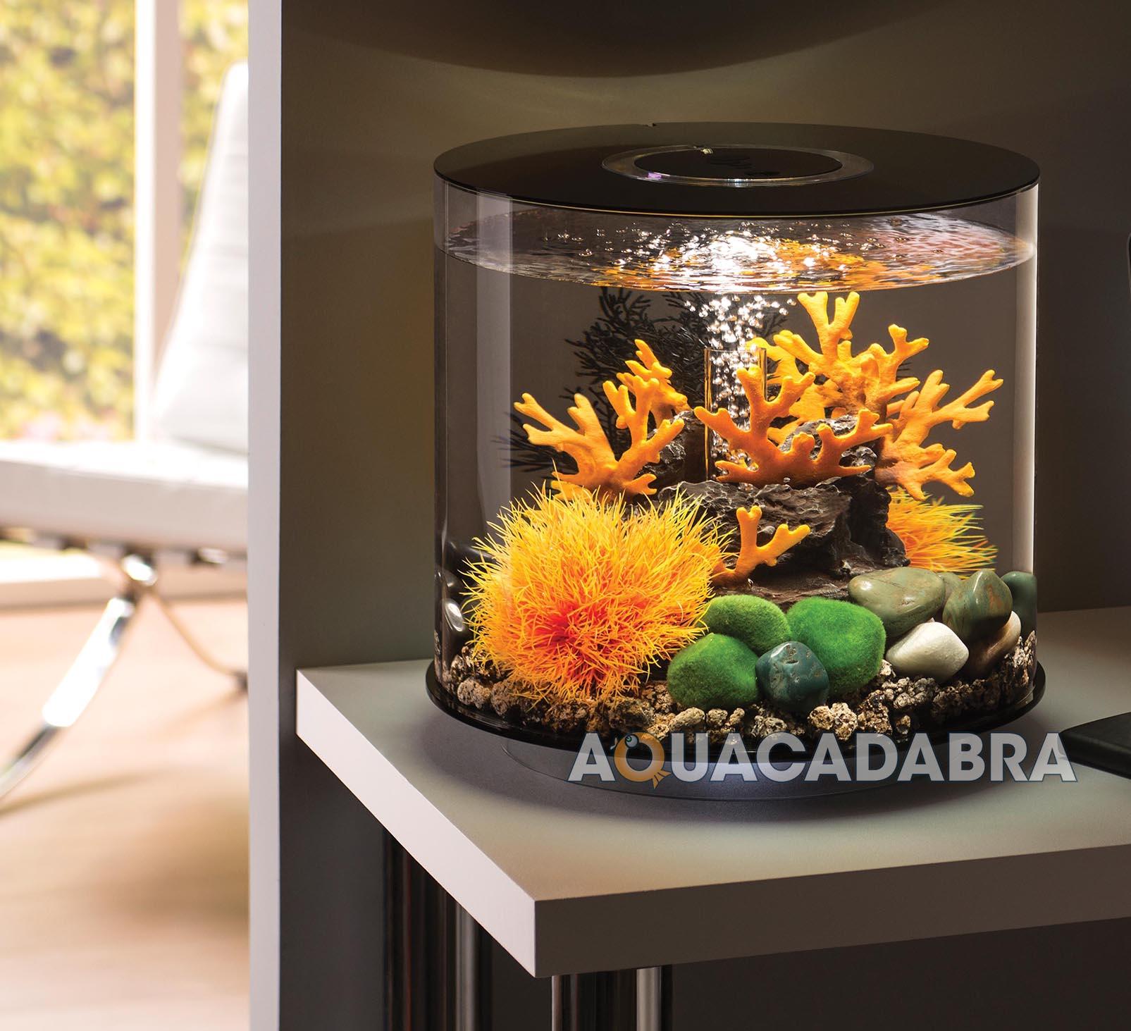 Oase biorb tube aquariums 15l 30l mcr led lighting filter for Tube fish tank