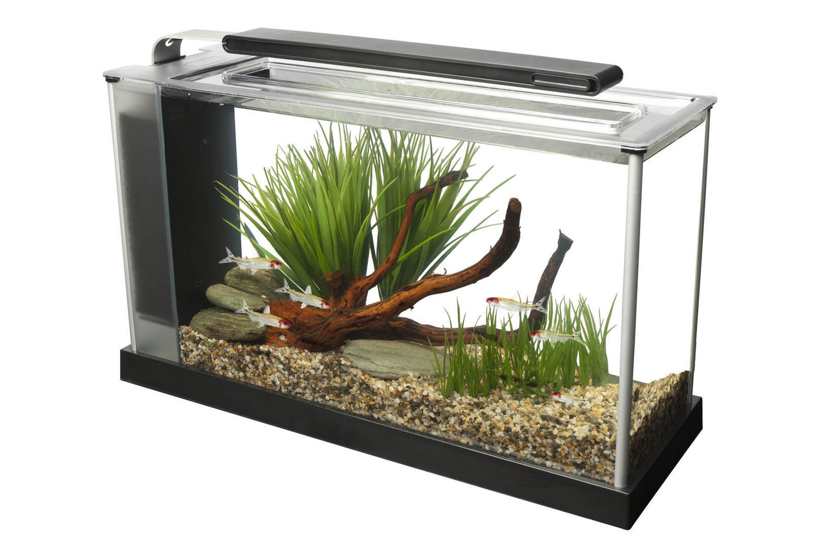 Aqua fashion fish tank 61