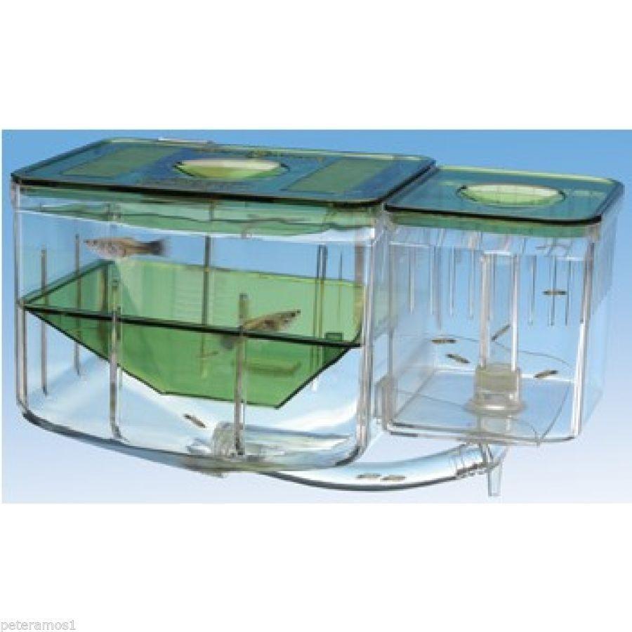 Penn plax aqua nursery automatic circulating hatchery for Fish breeding net