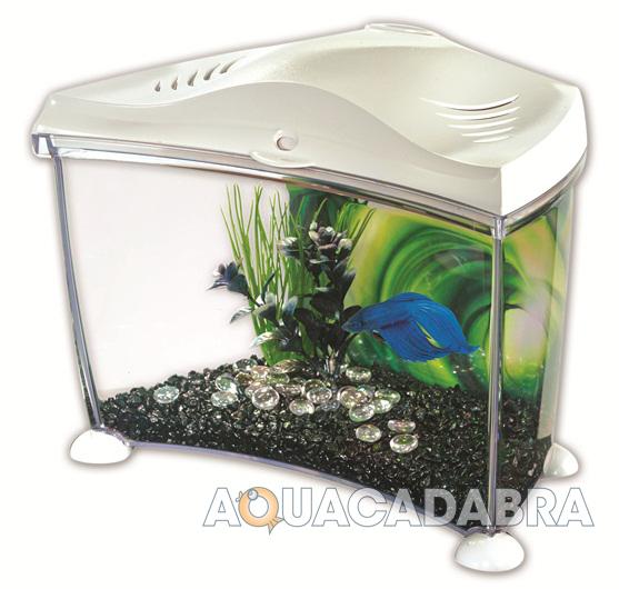 Marina betta aquarium starter kits white graphite siamese for Ebay betta fish