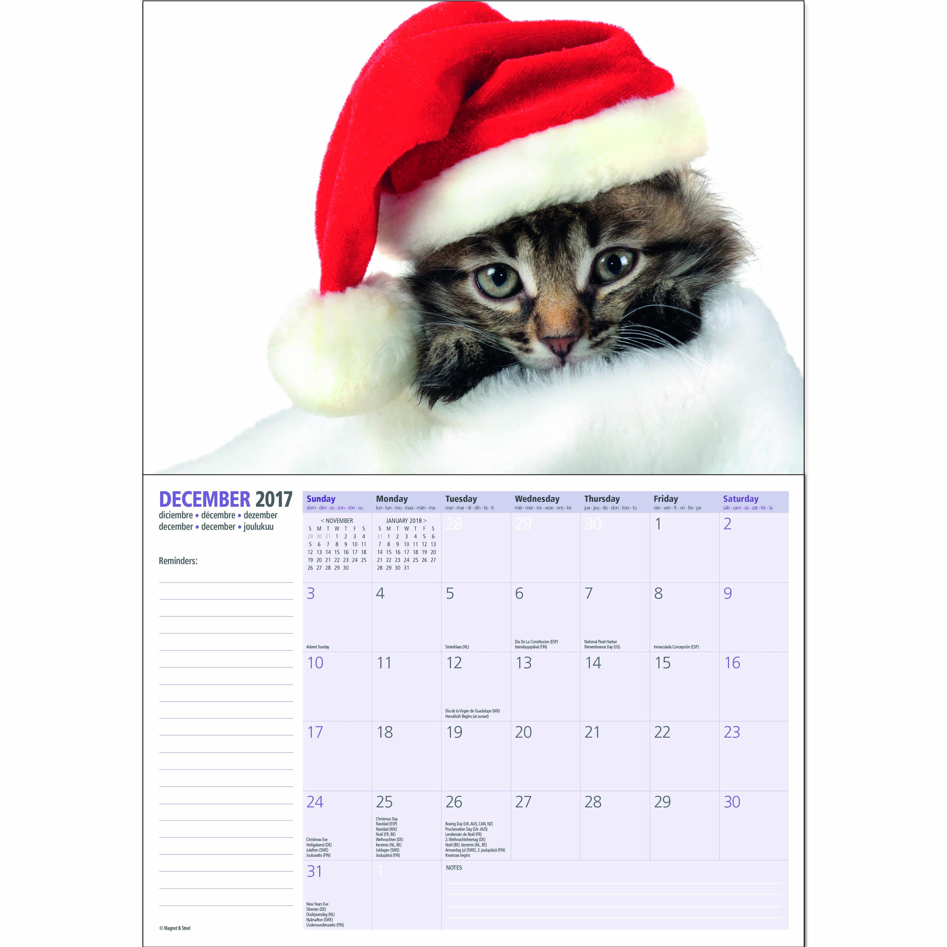 Des b b s animaux 2017 calendrier a4 eur 5 99 picclick fr - Calendrier chinois bebe 2017 ...