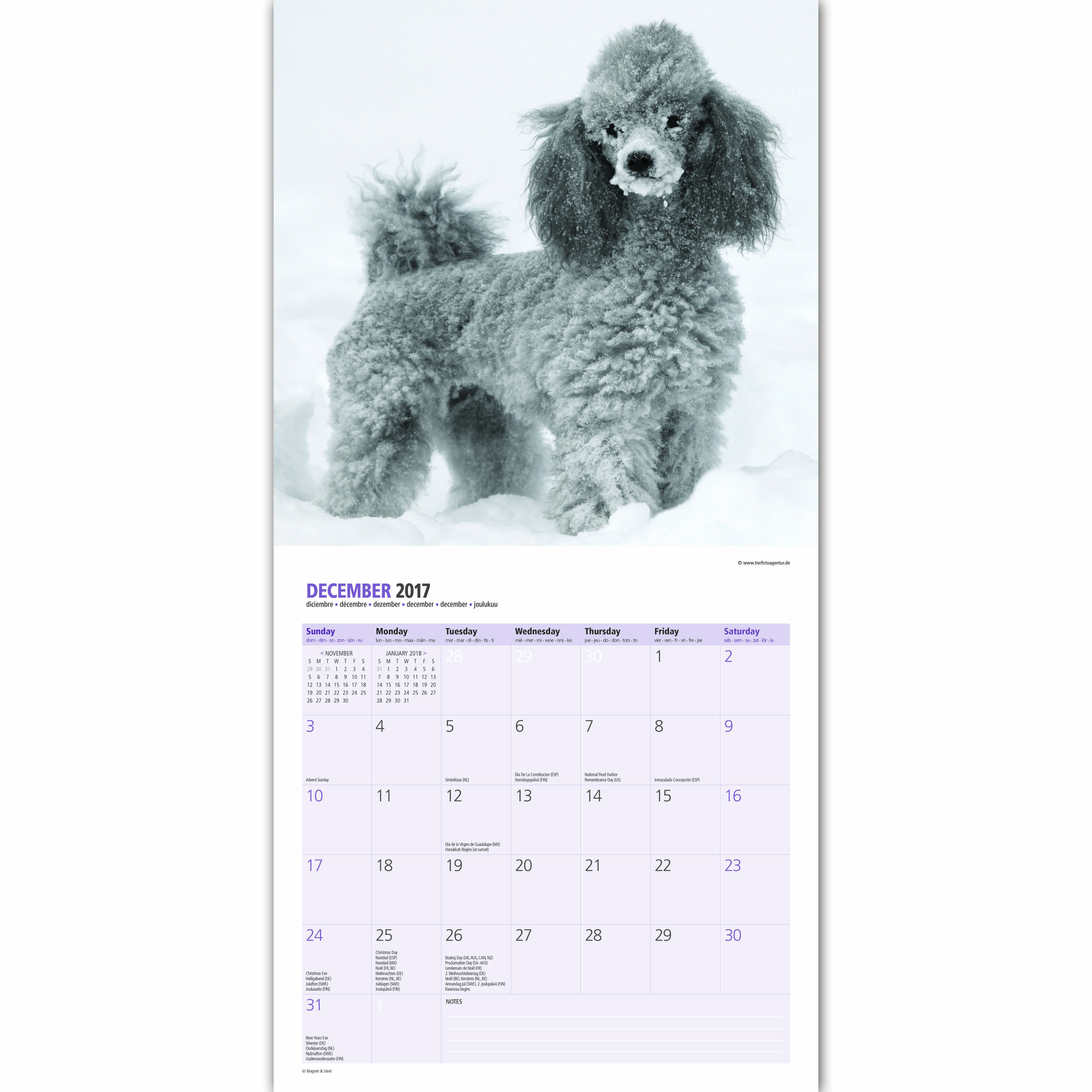 ... Calendar 2 2 of 3 Poodle - 2017 16 Month Traditional Calendar 3 3 of 3