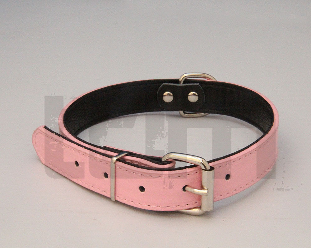 Soft Padded Leather Dog Collar For Small Medium Large
