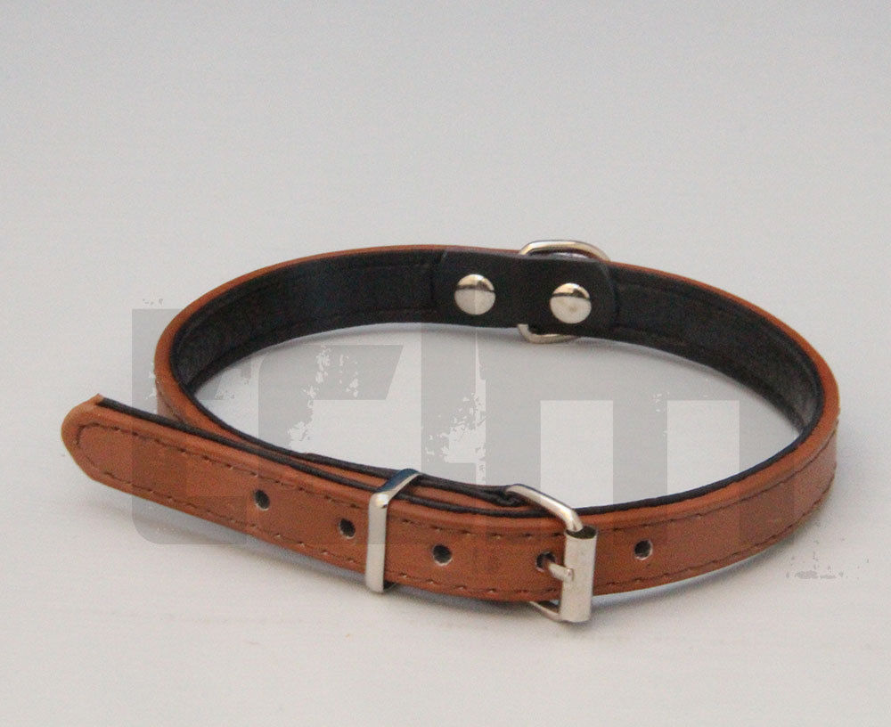 Why Buy Padded Dog Collar