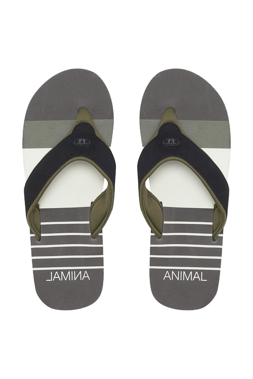 Animal Official Mens Jekyl Beach Pool Holiday Thongs Summer Sandals Flip Flops
