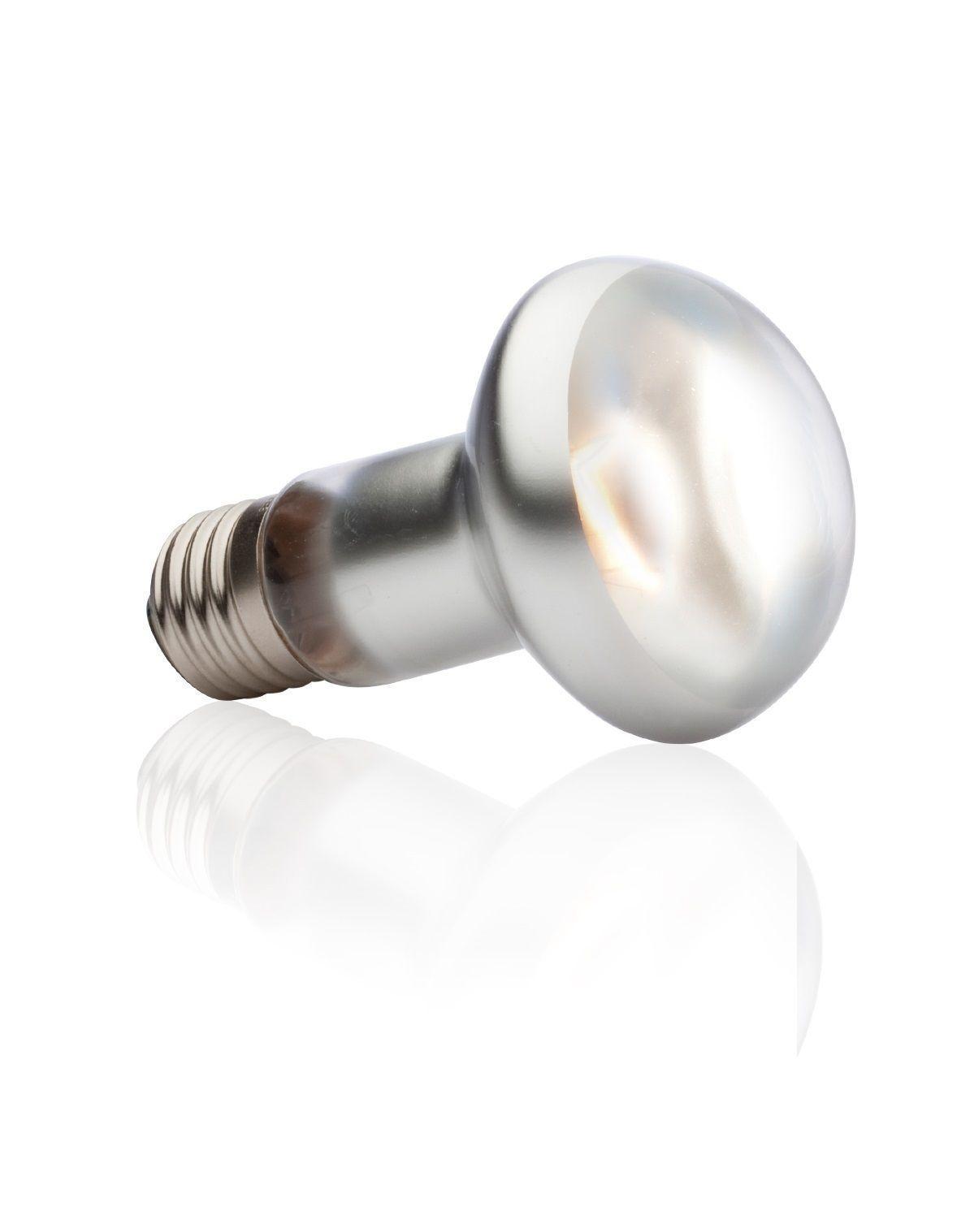 Exo Terra Intense Basking Spot Light Bulb Reptile Lighting Lamp Sun Glo Heat Ebay