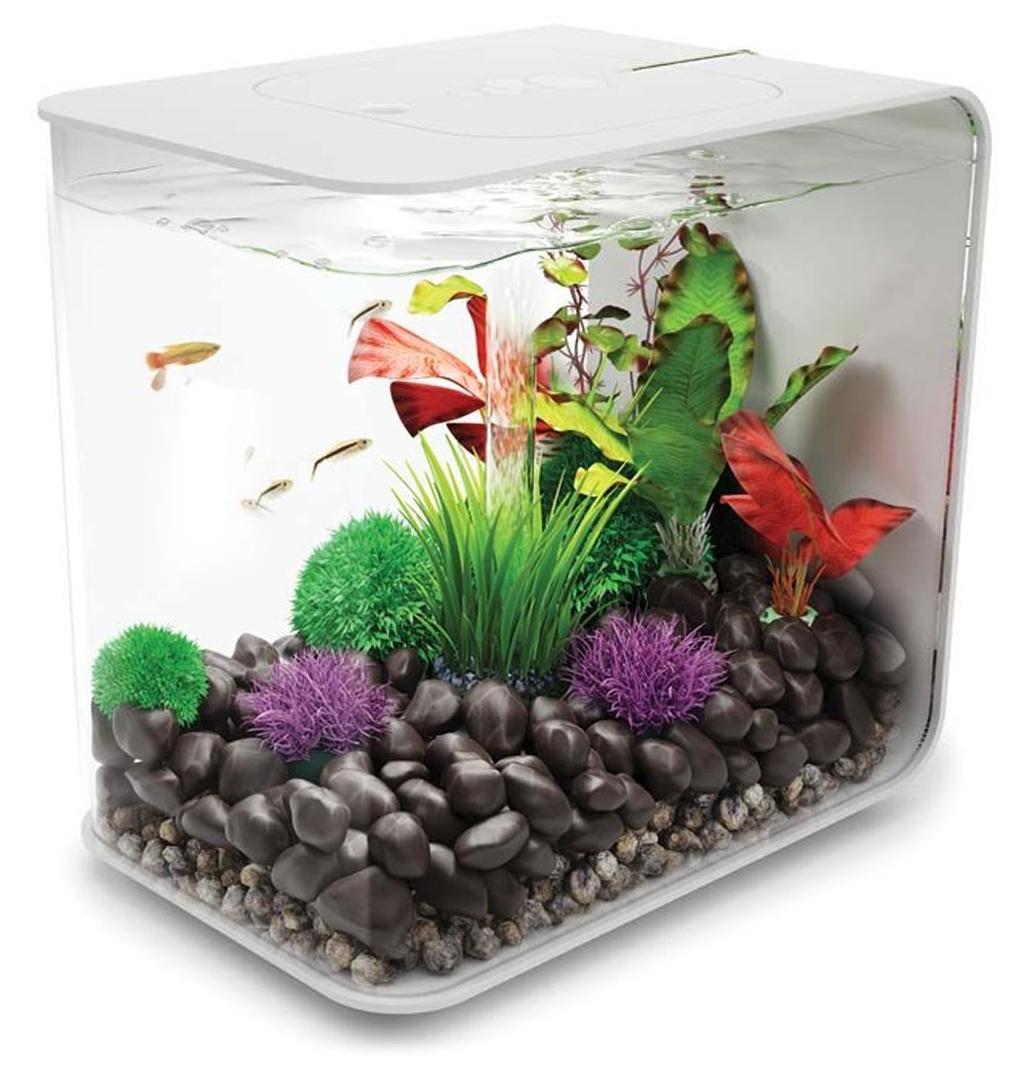 Biorb-Flow-Aquarium-Blanc-Noir-Fish-Tank-MCR-15-L-30-L-Multicolore-Tropical