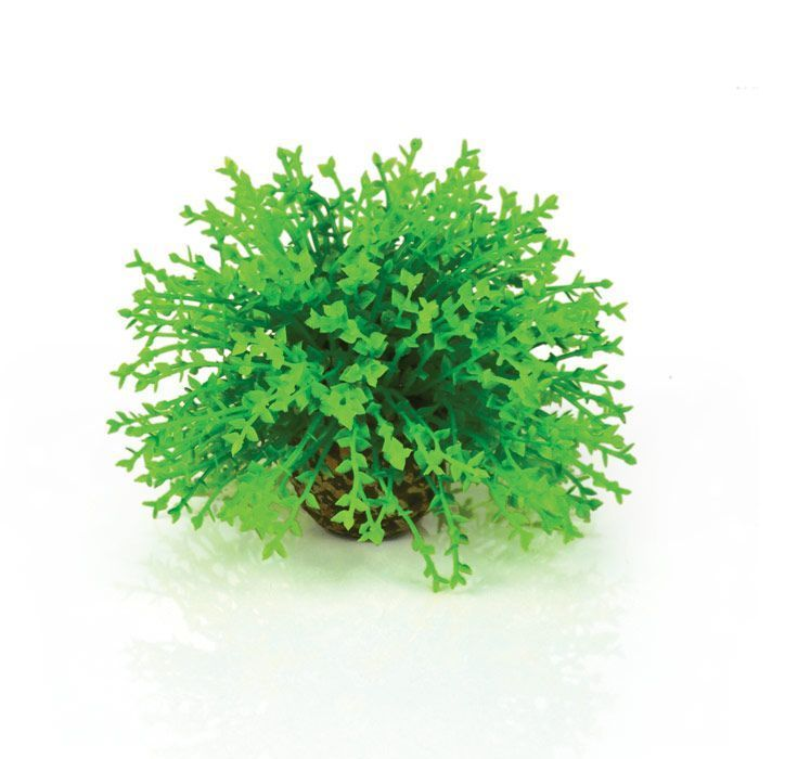 Oase biorb topiary ball plant decoration fish tank for Aquarium decoration sealant