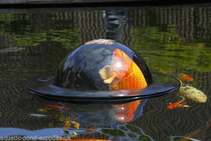 Medium velda floating fish sphere dome pond water garden for Outdoor fish pond care