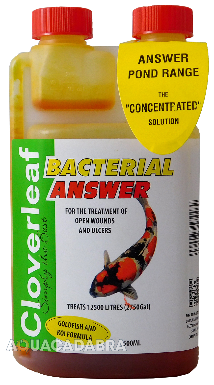 Cloverleaf bacterial answer koi goldfish wounds ulcer for Koi pond treatment