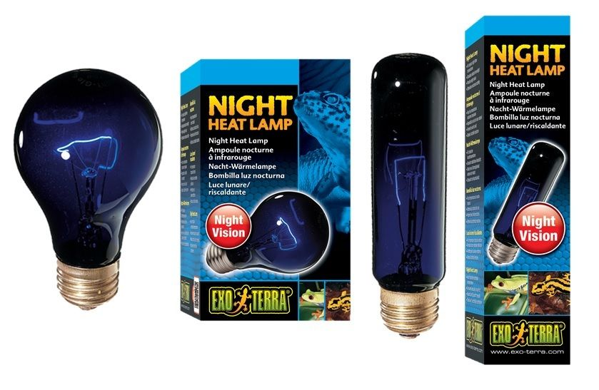 Exo Terra Night Heat Lamp T10 A19 Reptile Glo Moonlight Light Bulb Ebay