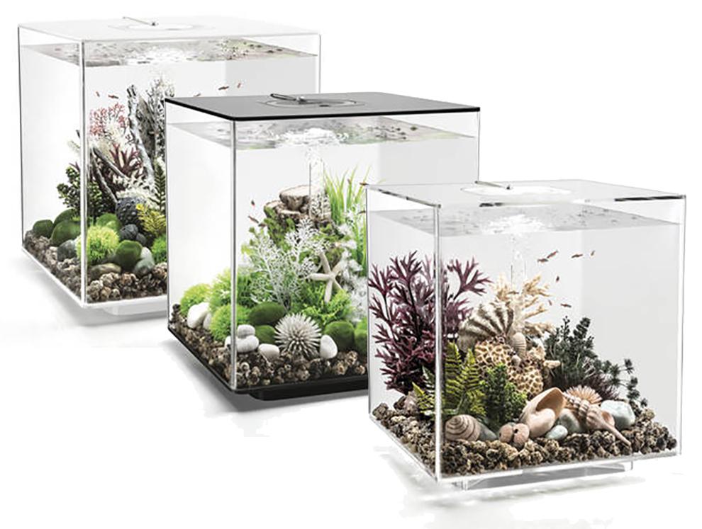 Biorb Cube Mcr 60l Aquariums Black White Clear Fish Tank