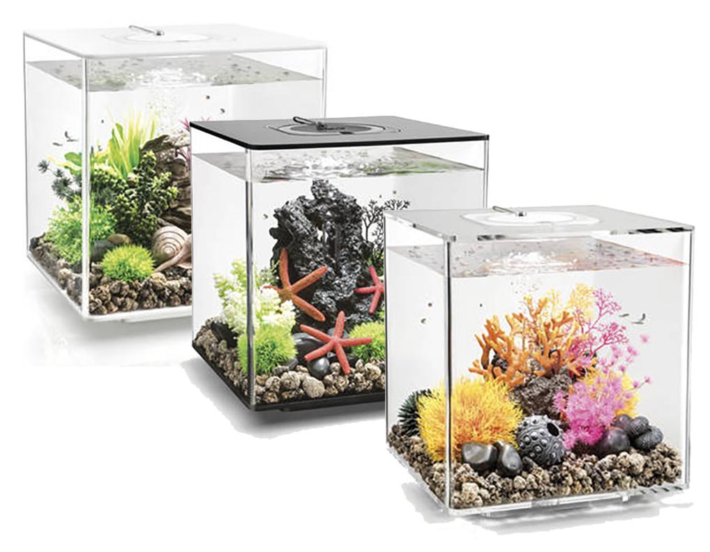 Biorb Cube Mcr 30l Aquariums Black White Clear Fish Tank