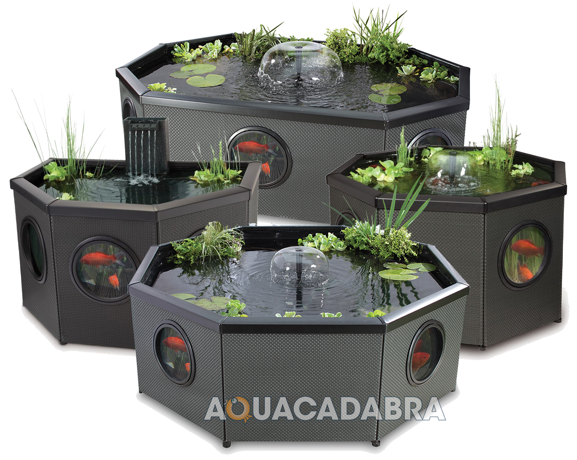 BLAGDON AFFINITY MOCHA FISH POND KOI COLDWATER PATIO AQUARIUM POOL WATER  FEATURE