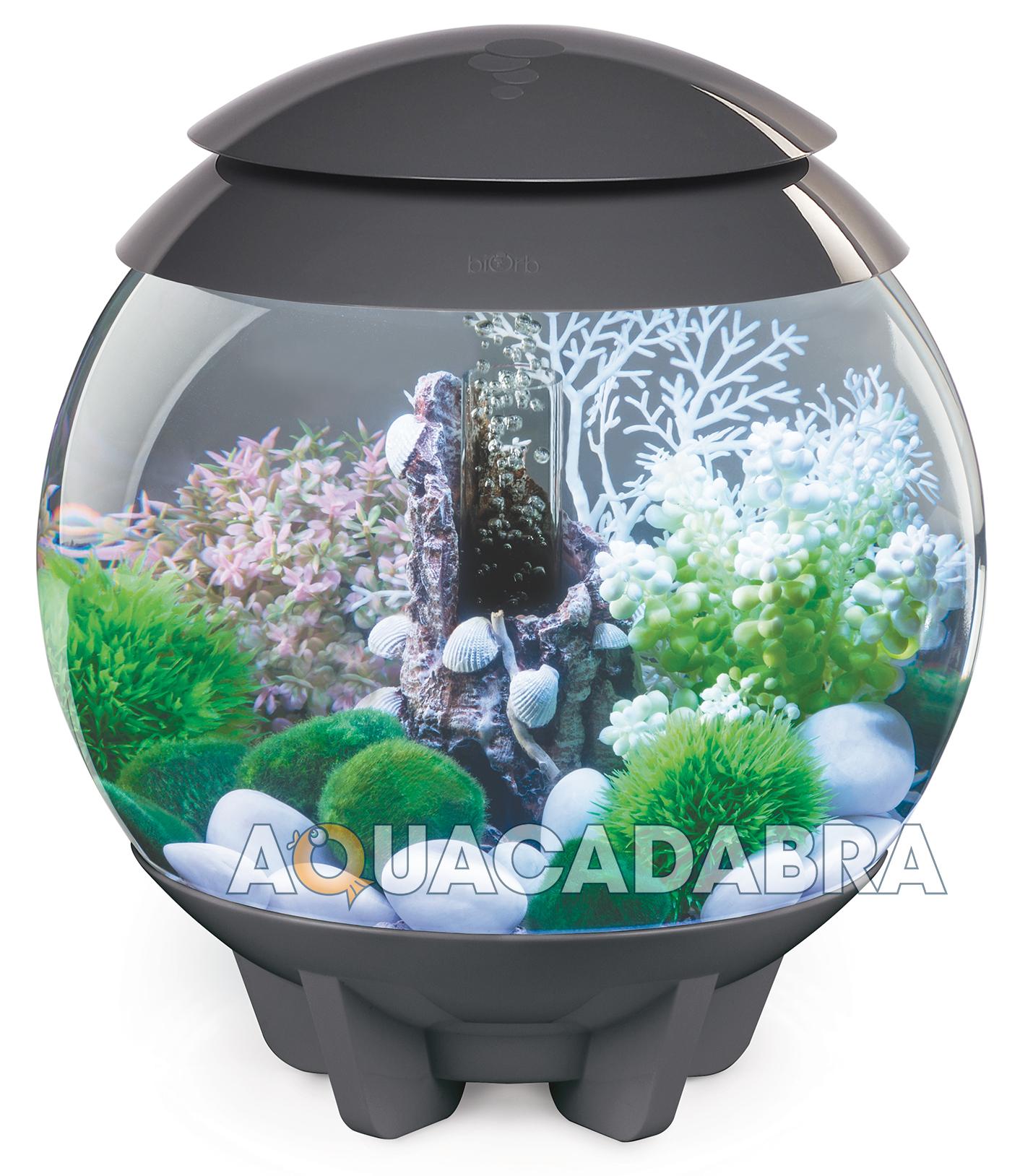 Oase biorb 15l halo multi colour remote led mcr bowl fish for Fish tank bowl