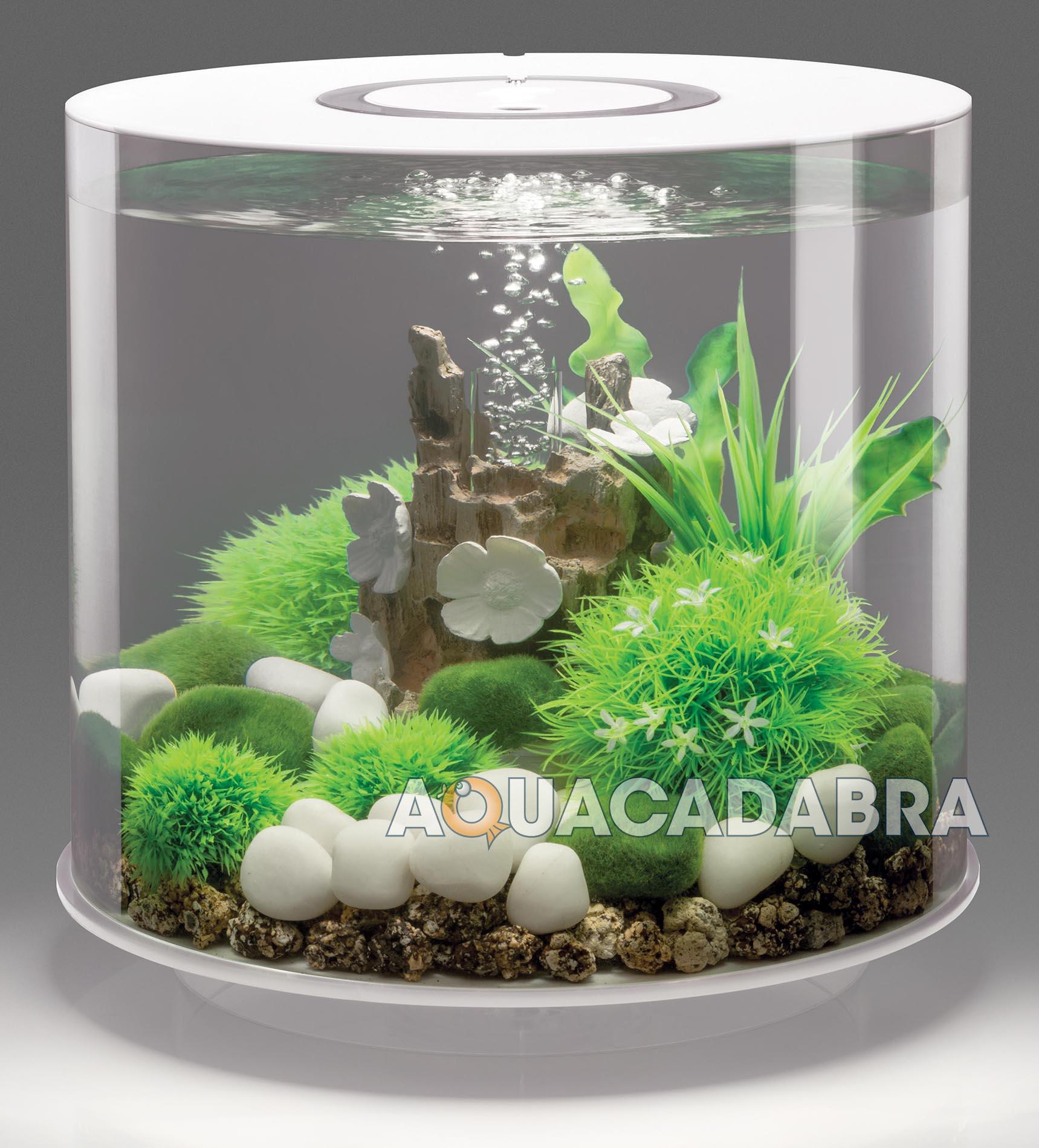 Biorb tube 15l white led aquarium lighting filter all in for Tube fish tank