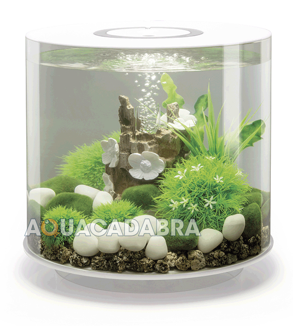 oase biorb tube aquariums 15l 30l mcr led lighting filter