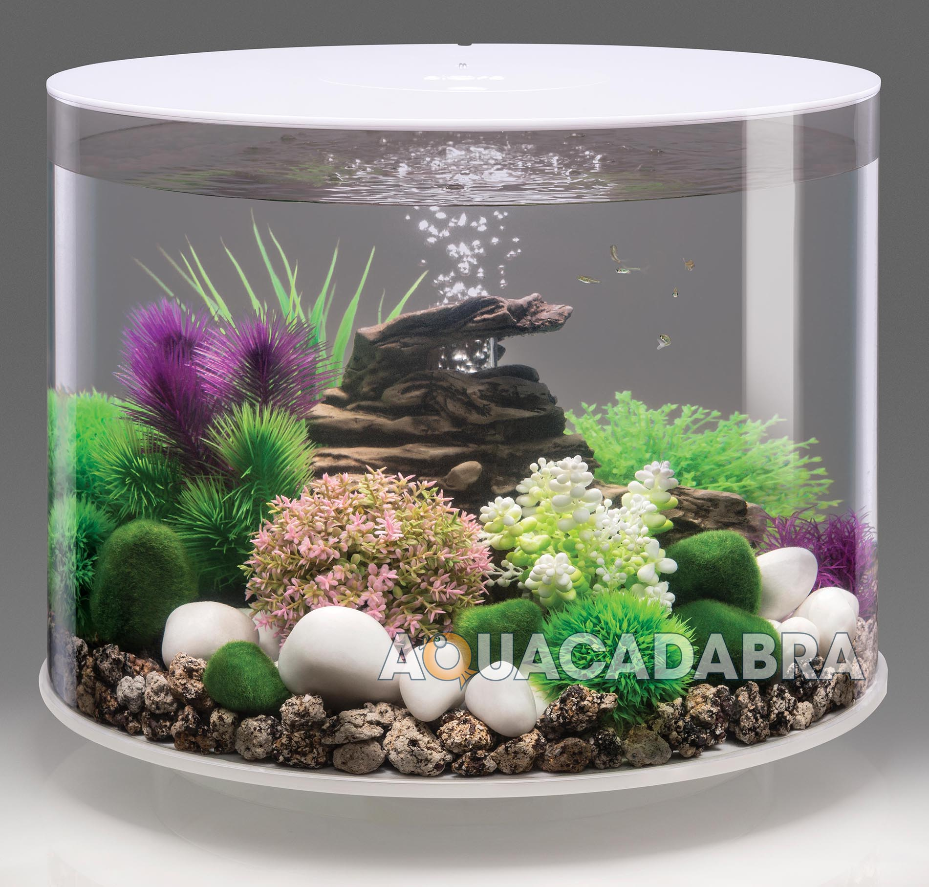 how to clean fish tank filter tubes
