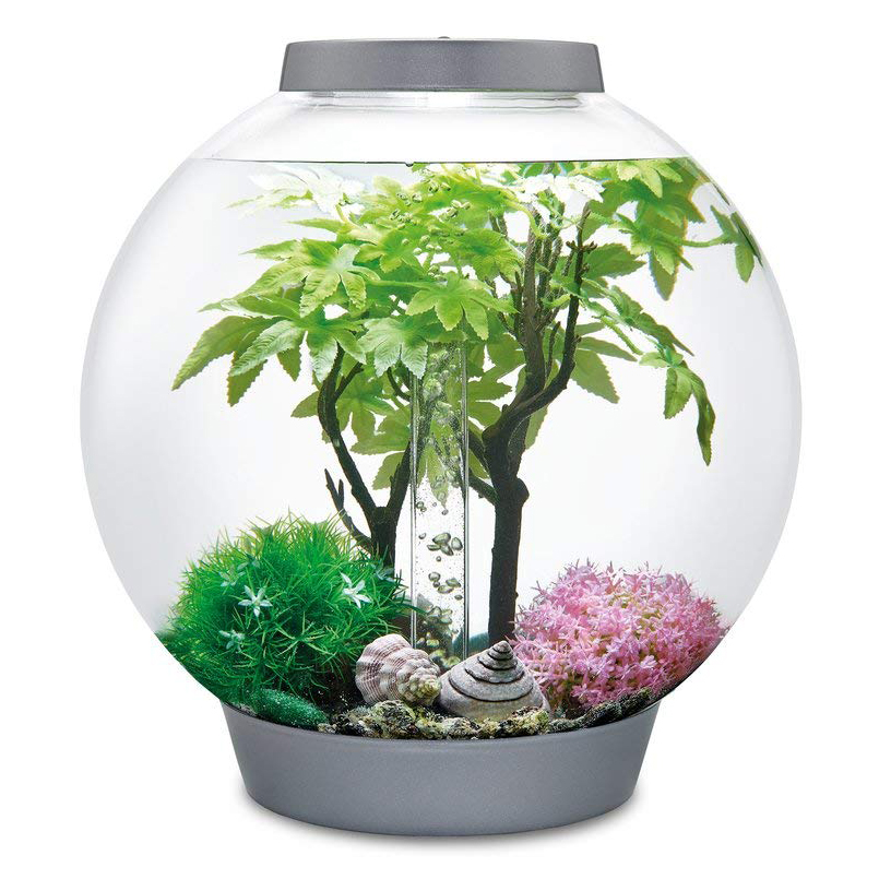 Biorb-saisonniere-Decor-Set-30-l-automne-hiver-ete-ornement-Fish-Tank-Aquarium miniature 7