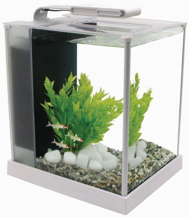 Fluval Spec Aquarium 10l 19l Gloss Black White Led Light
