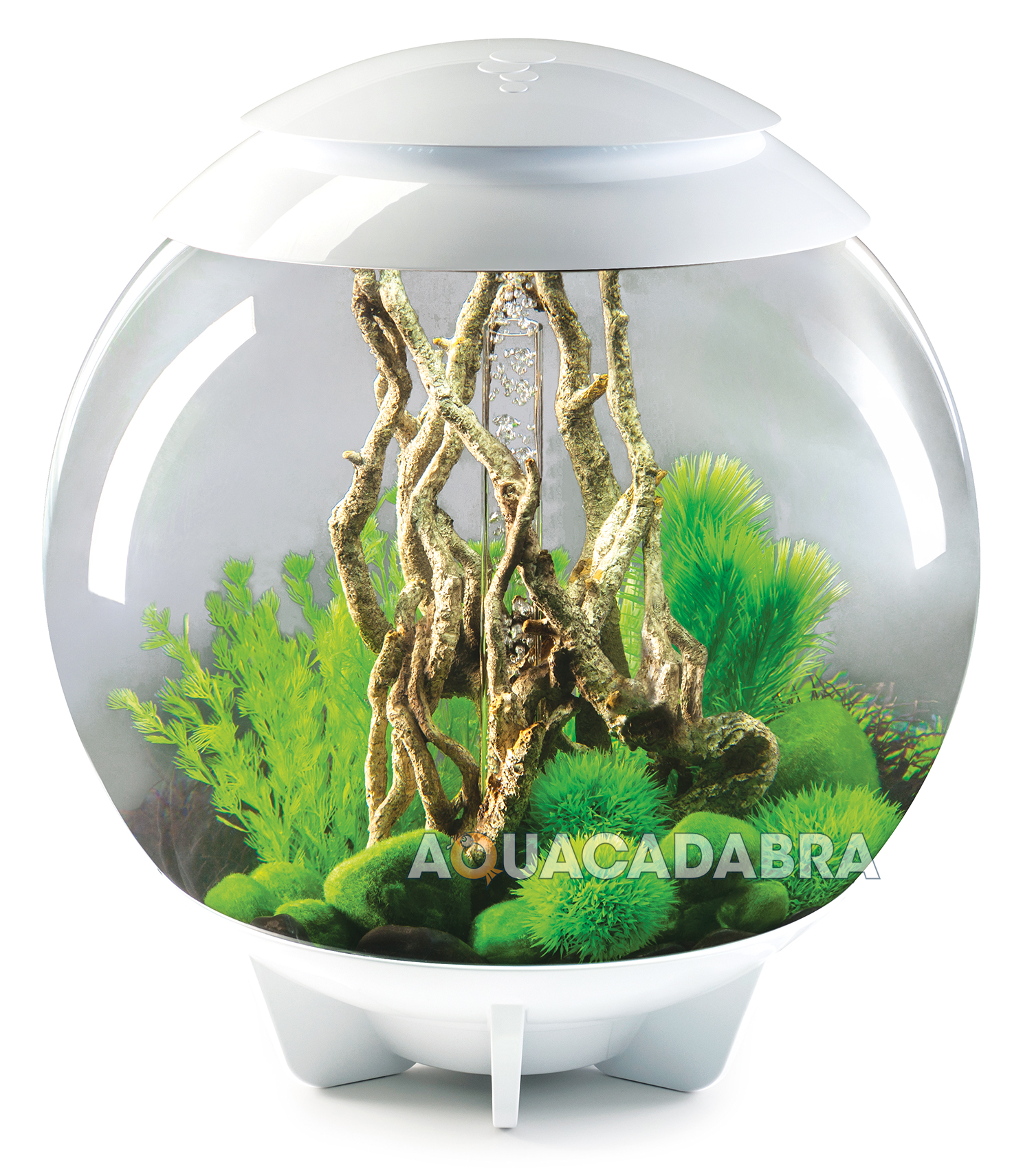Oase biorb 60l halo multi colour remote led mcr bowl fish for Fish bowl aquarium