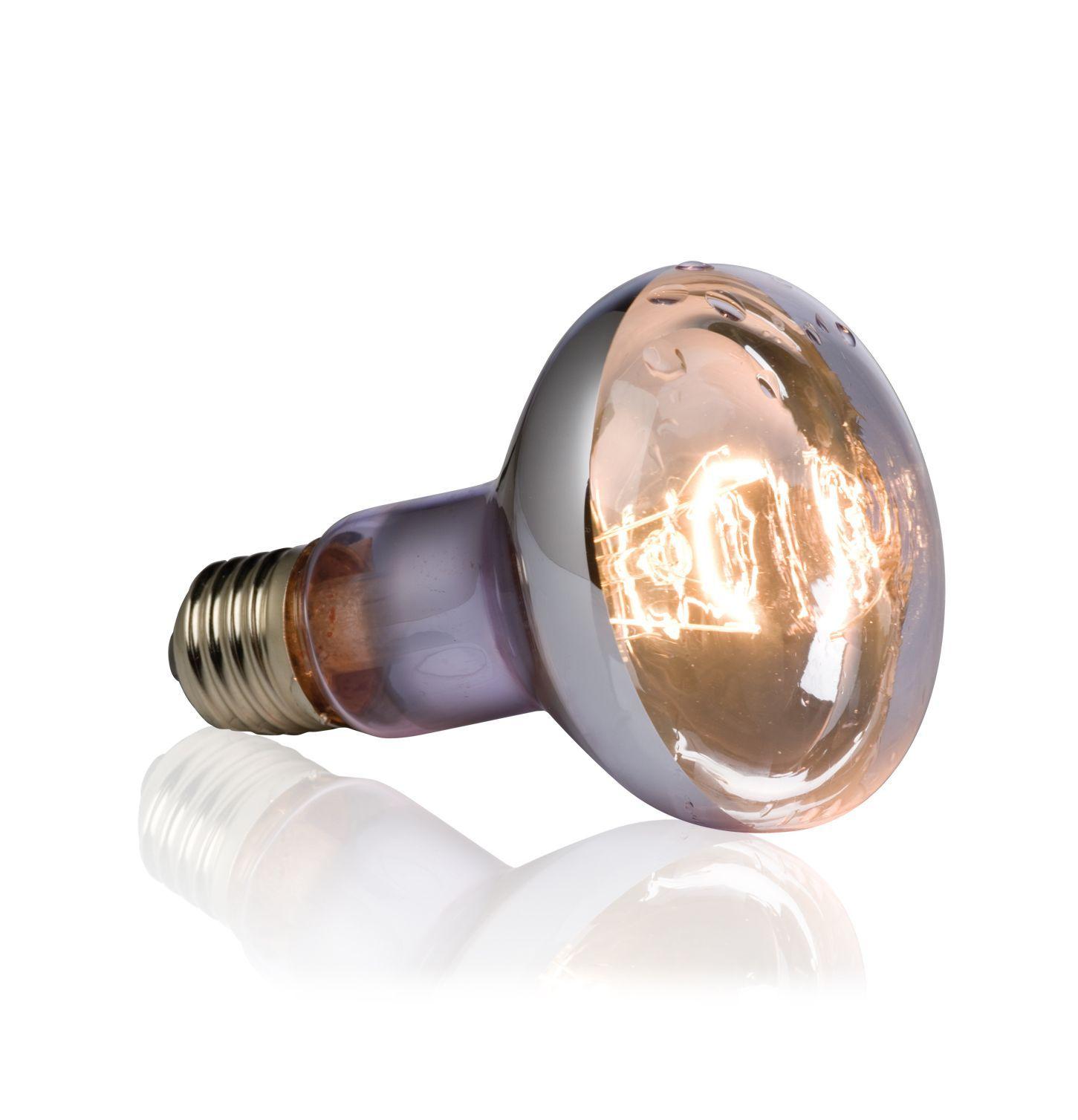 Exo Terra Ampoule Reptile Lampe Basking Lampe Chaleur
