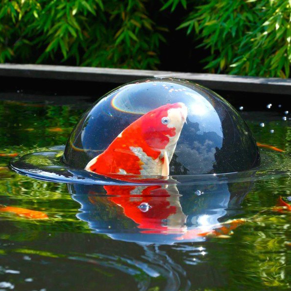 Velda floating fish sphere dome garden pond water koi for Koi fish pond care