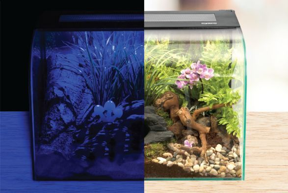 Exo Terra Habisphere Reptile Terrarium Stylish Amphibian Invertebrate Vivarium Ebay