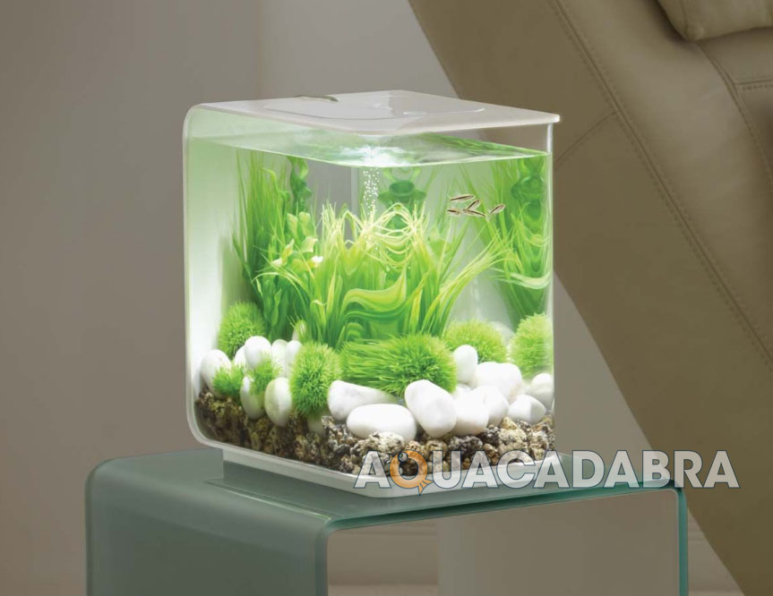 Oase Biorb Flow 15l 30l Fish Tank Aquarium Coldwater