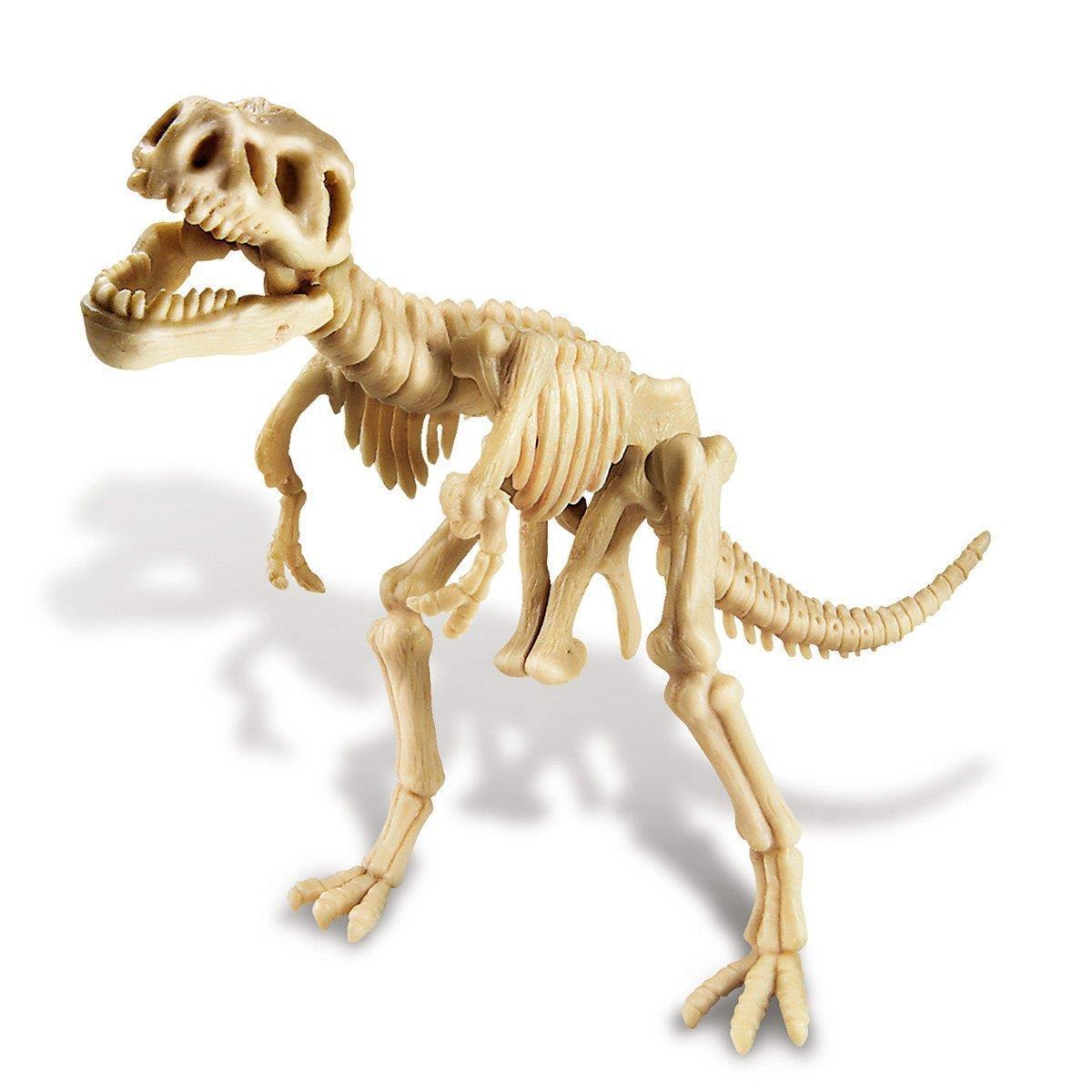Kids Labs Dig A Trex Skeleton