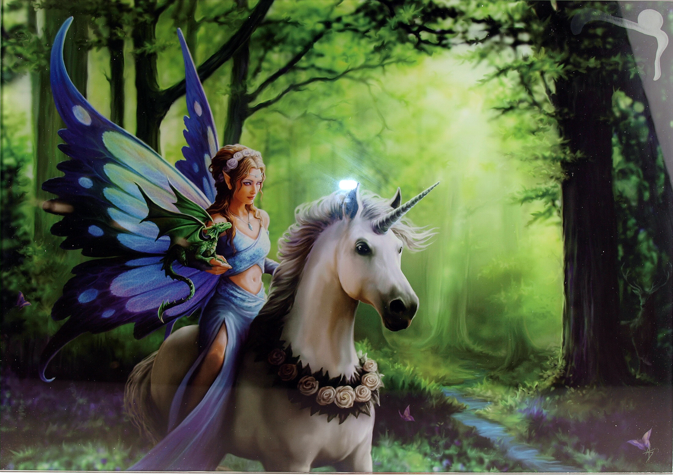 Details about Realm of Enchantment Fairy Unicorn Forest Glass Wall Art 50cm  Picture