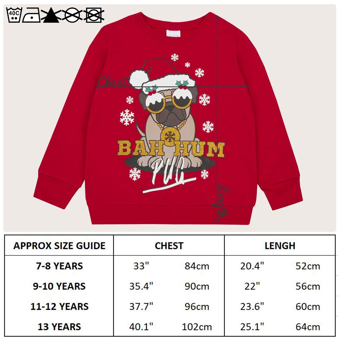 Enfants-Garcons-Filles-Noel-Noel-Pull-Sweat-shirt-Carlin-Glitter-chaud miniature 8
