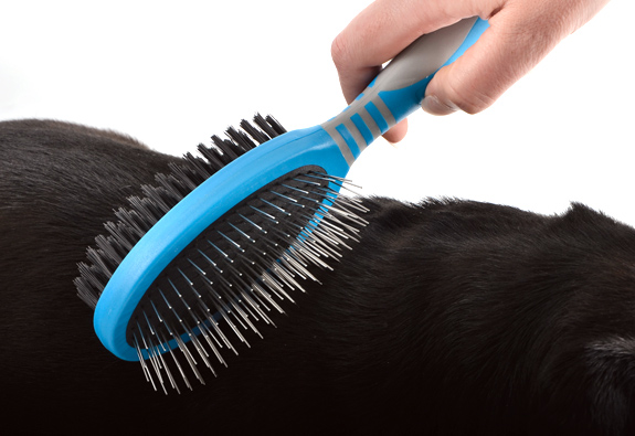 Ancol-Dog-Grooming-Brush-Comb-Slicker-Rake-Pads-Scissors-Nail-Files-Clippers thumbnail 3