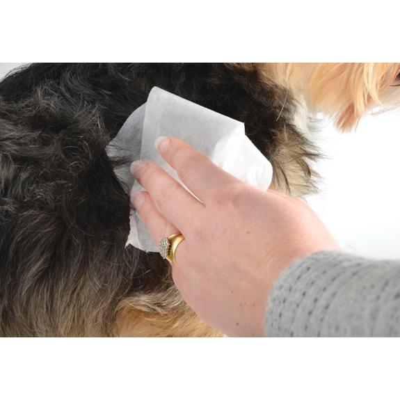 Ancol-Dog-Grooming-Brush-Comb-Slicker-Rake-Pads-Scissors-Nail-Files-Clippers thumbnail 60