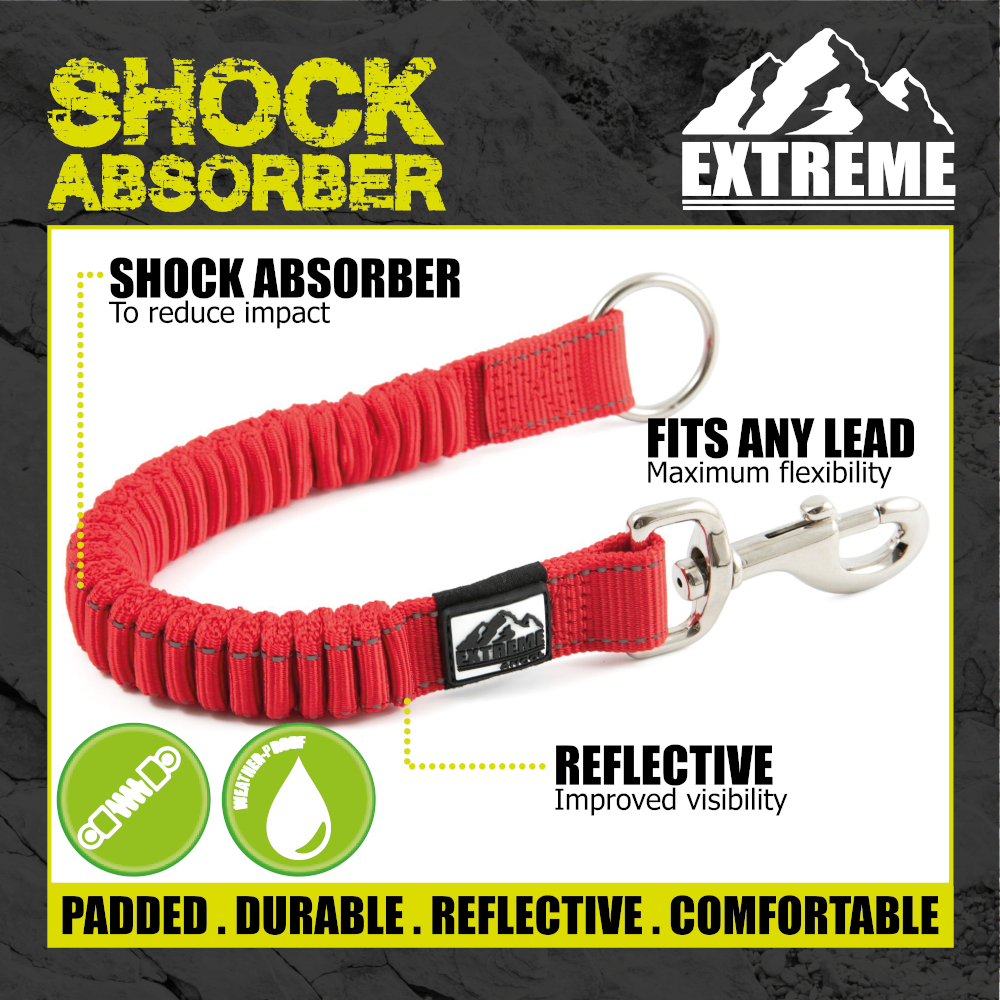 thumbnail 29 - Ancol-Dog-Leads-Puppy-Fashion-Extreme-Bungee-Durable-Nylon-Leash-Funky-Designs