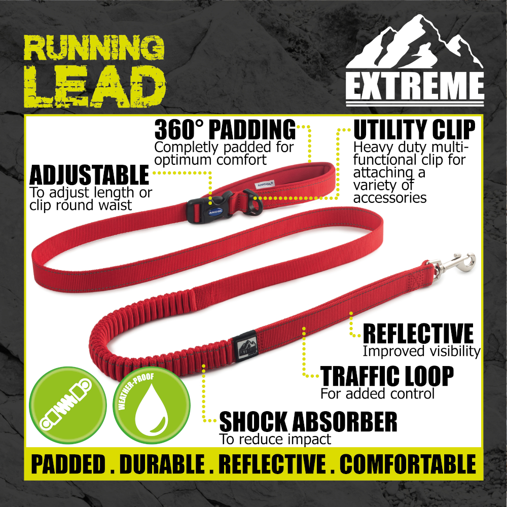 thumbnail 25 - Ancol-Dog-Leads-Puppy-Fashion-Extreme-Bungee-Durable-Nylon-Leash-Funky-Designs