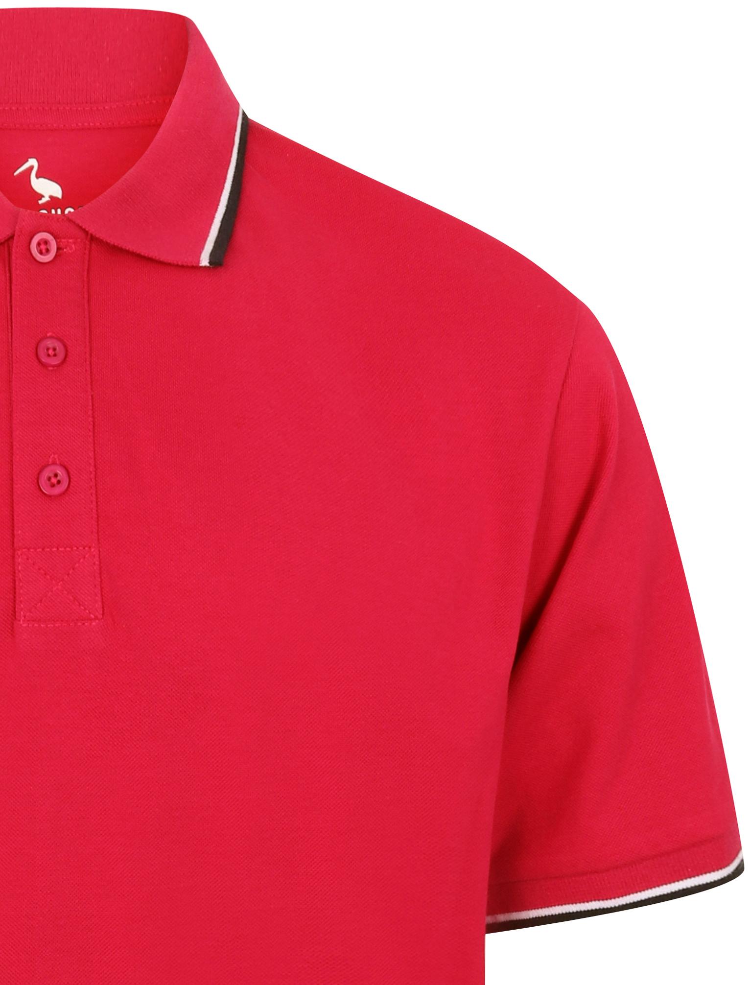Sth-Shore-Mens-Plain-Polo-Shirt-100-Pique-Cotton-T-Shirt-Top-Collar-Size-M-XXL thumbnail 37