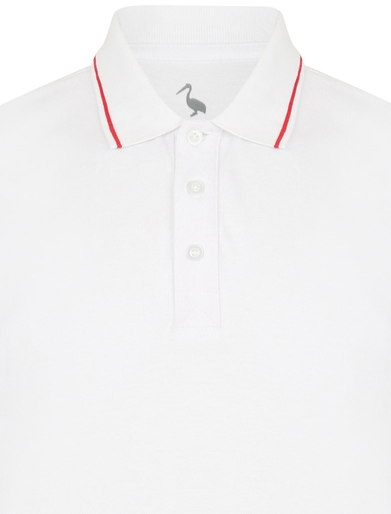 Sth-Shore-Mens-Plain-Polo-Shirt-100-Pique-Cotton-T-Shirt-Top-Collar-Size-M-XXL thumbnail 40