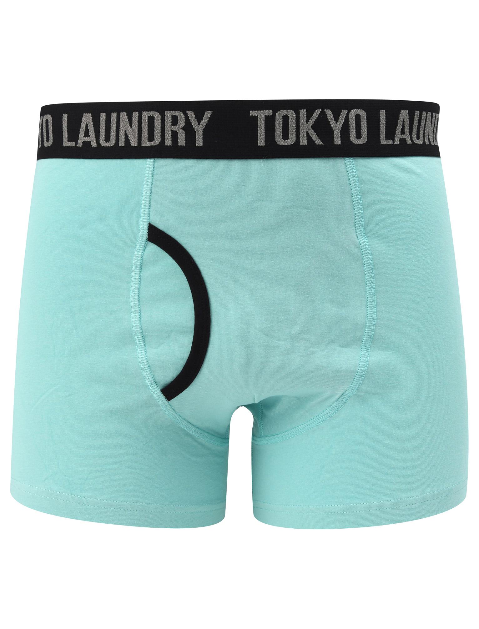 New-Mens-Tokyo-Laundry-2-Pack-Cotton-Rich-Boxer-Shorts-Set-Trunks-Size-S-XXL thumbnail 70