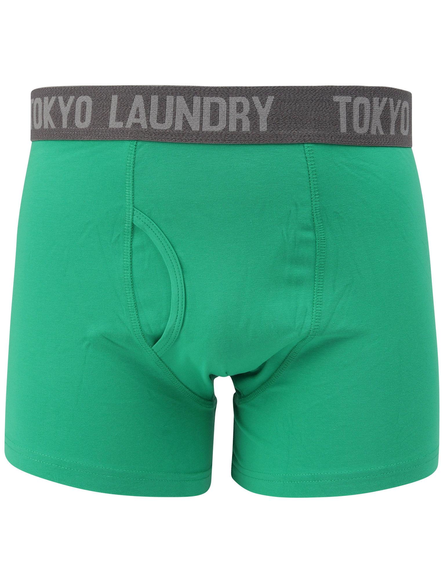 New-Mens-Tokyo-Laundry-2-Pack-Cotton-Rich-Boxer-Shorts-Set-Trunks-Size-S-XXL thumbnail 45