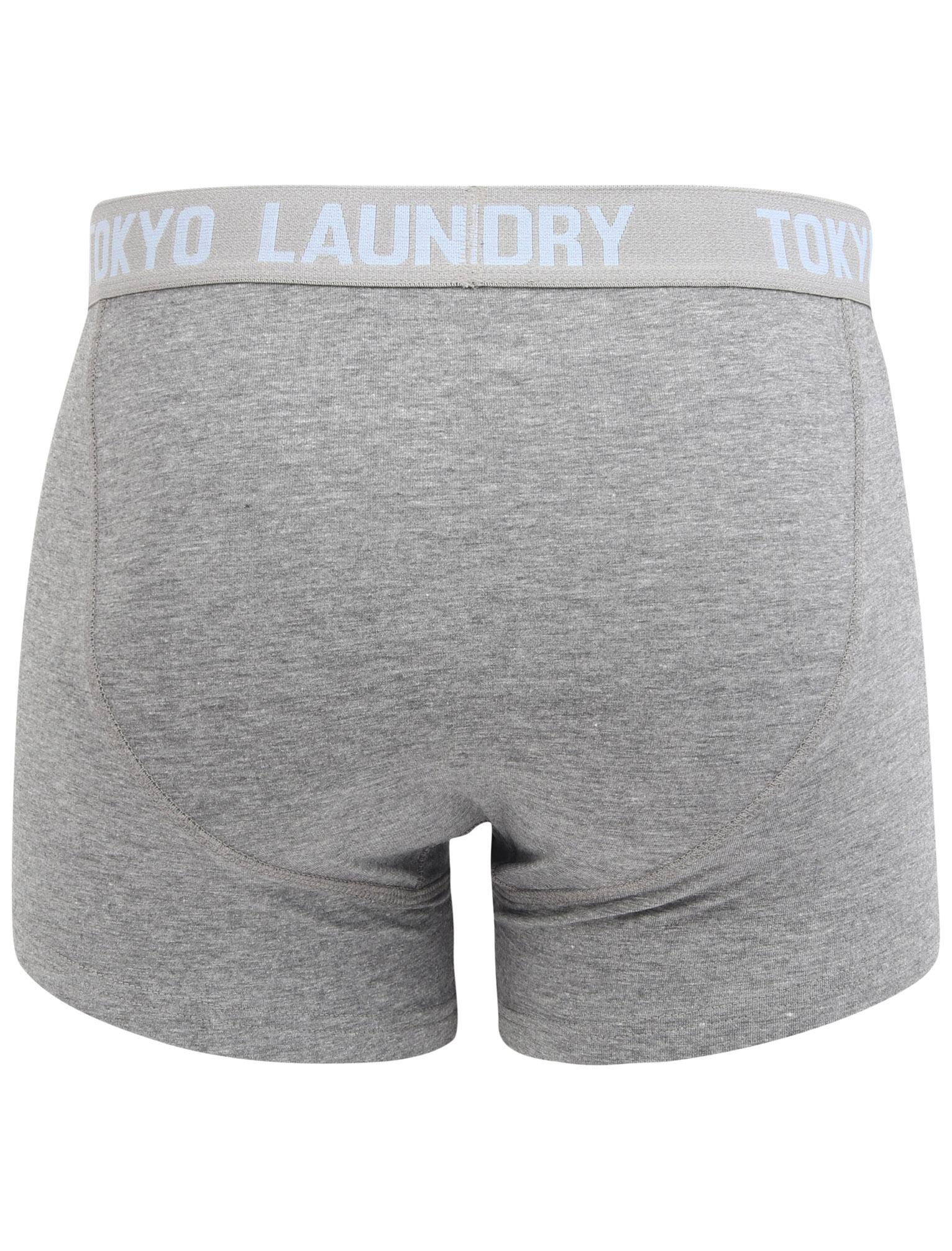 New-Mens-Tokyo-Laundry-2-Pack-Cotton-Rich-Boxer-Shorts-Set-Trunks-Size-S-XXL thumbnail 24
