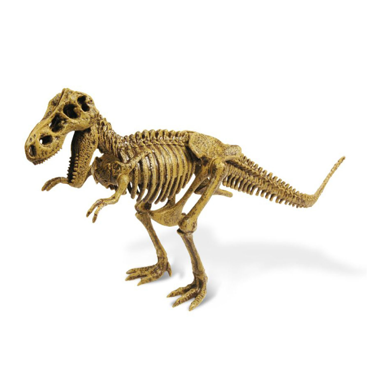 Dr-Steve-Hunters-Kids-Children-Jurassic-Eggs-Or-Excavation-Dinosaur-Caveman-Kits thumbnail 12