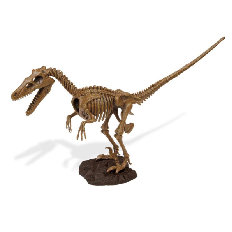Dr-Steve-Hunters-Kids-Children-Jurassic-Eggs-Or-Excavation-Dinosaur-Caveman-Kits thumbnail 6