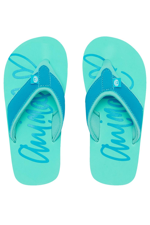 13dc4bd9854a Animal Official Girls Swish Logo Thong Flip-Flops Kids Beach Pool ...