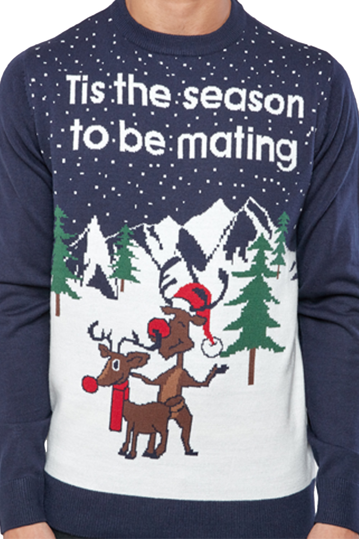 Seasons-Greetings-Adults-Christmas-Jumper-Novelty-Funny-Rude-Xmas-Sweater-Top thumbnail 35